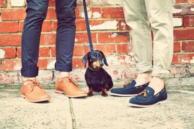 Bared Footwear Men's and Frankie!